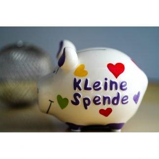 KCG-Schwein: Kleine Spende